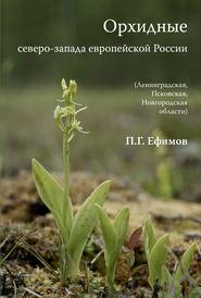 Орхидные северо-запада европейской России