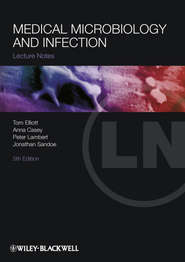 Medical Microbiology and Infection