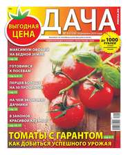 Дача Pressa.ru 04-2019