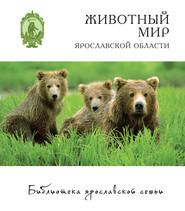 Животный мир Ярославской области