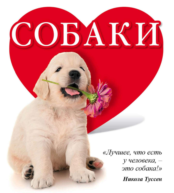 Поздравлениями, картинка с надписью моя собачка
