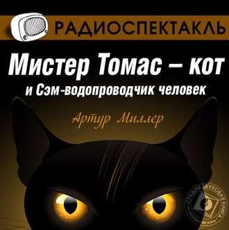 Аудиокнига черный кот слушать